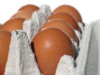 1070359_eggs_carton_3