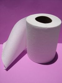 323866_sanitary_paper_2