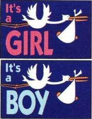 Girlboybanners