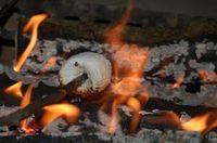 692407_toasting_marshmallow